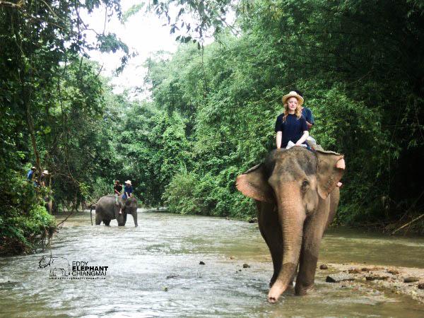 Bạn có thể đến Chiang Mai vào bất cứ khi nào bạn thích, có rất nhiều trải nghiệm thú vị dành cho bạn. Bạn có thể đi bộ xuyên rừng, hòa mình vào thiên nhiên hoang dã và tìm hiểu cuộc sống của người dân bản địa nơi đây. Bạn có thể nghỉ ngơi trong các túp lều tại một ngôi làng và thưởng thức các món ăn địa phương có một không hai.