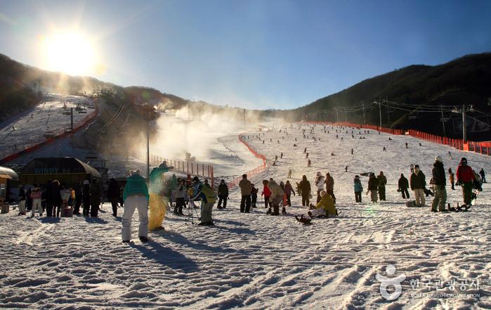 Hàn Quốc – Địa điểm trượt tuyết hấp dẫn