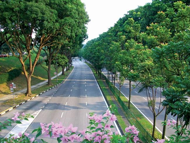 Một số lưu ý bạn không nên làm ở Singapore