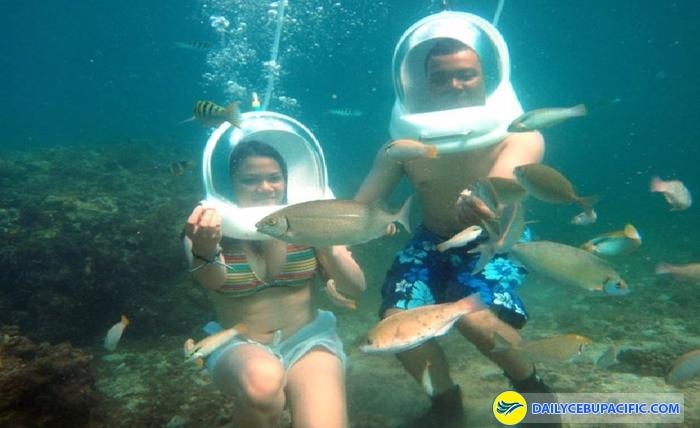 Với trải nghiệm này, thế giới dưới biển hiện lên như những thước phim 3D